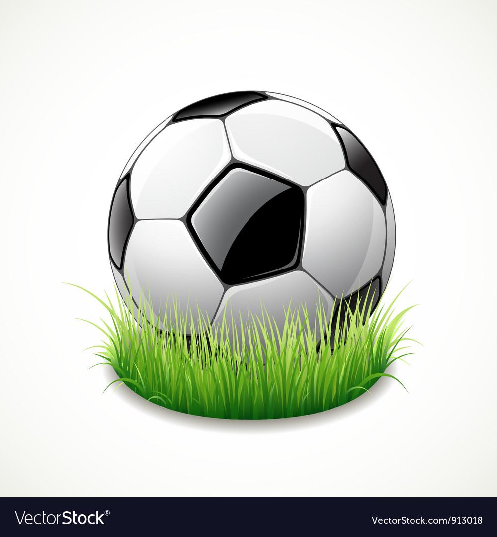 Football on green grass vector image