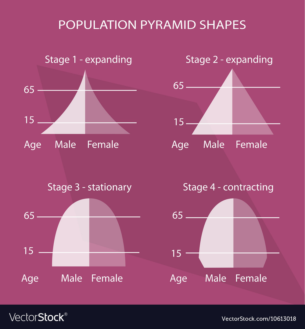 Image result for image different population pyramids