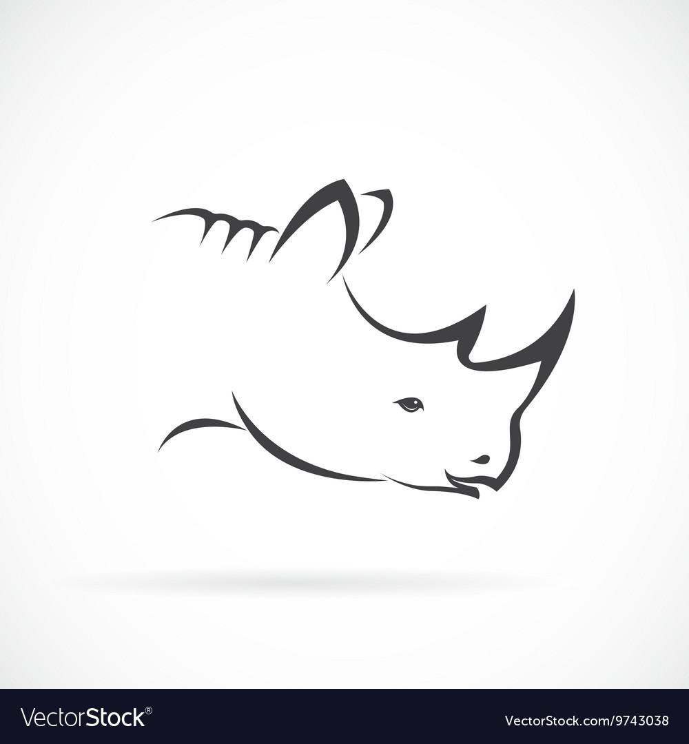 Image of rhino head on white background