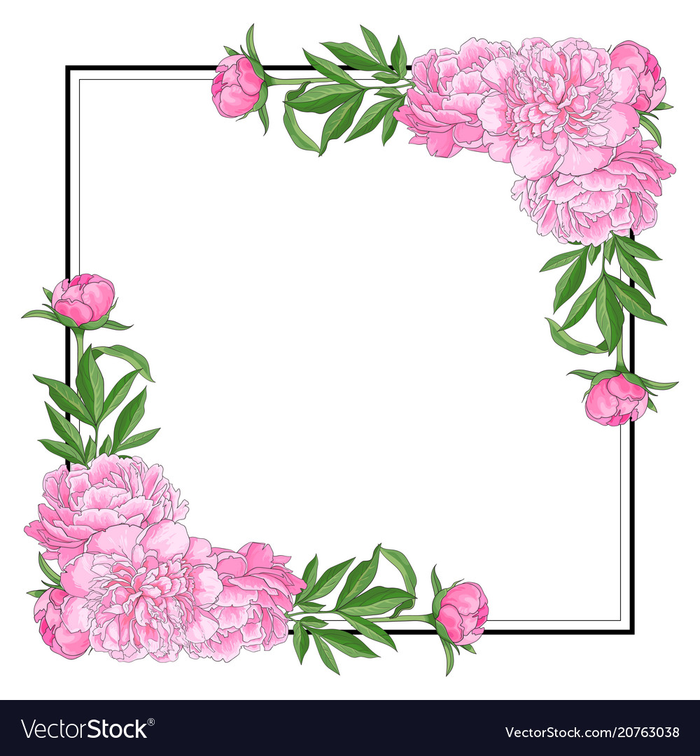 Tender pink peonies on corners of square shape