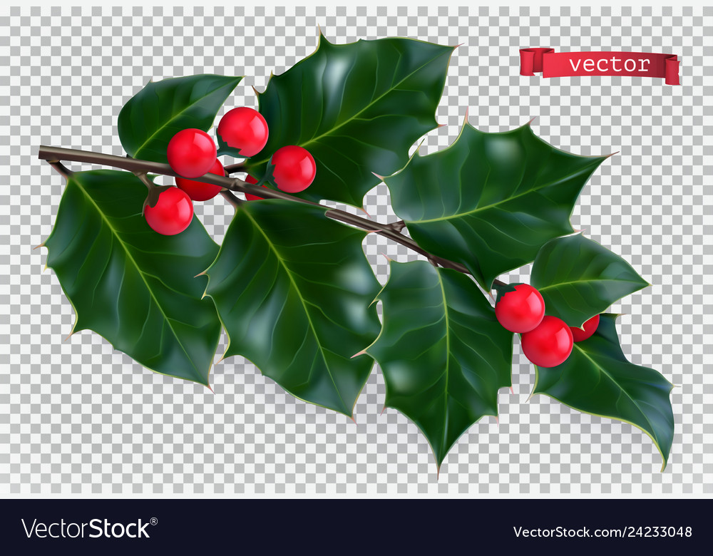 Holly traditional christmas decoration 3d