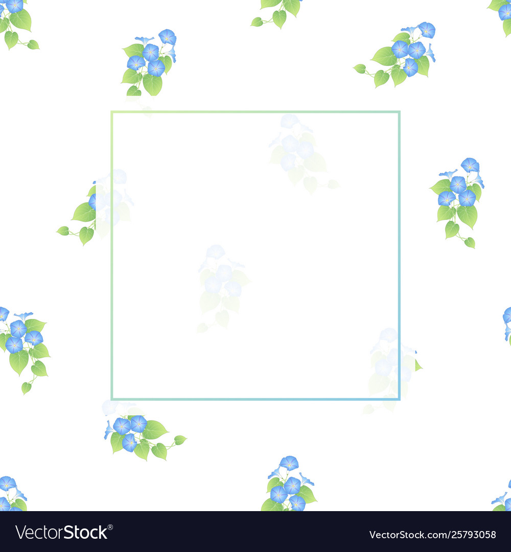 Blue morning glory banner on white background