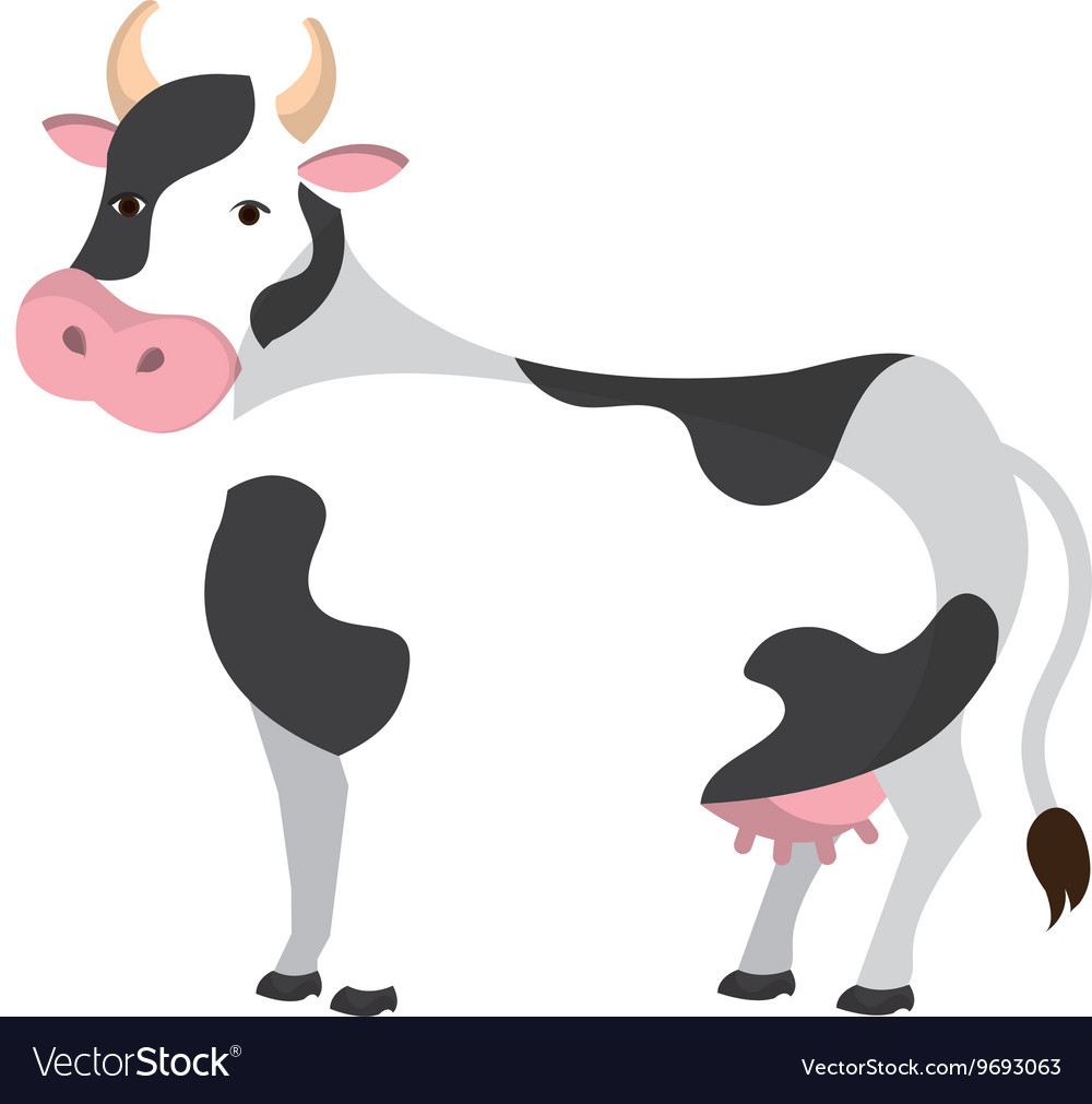 Cow colorful animal cartoon icon