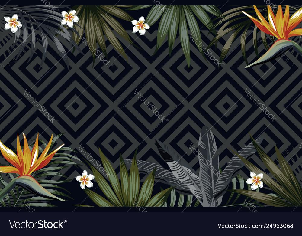 Night tropical banner flowers leaves geometrical