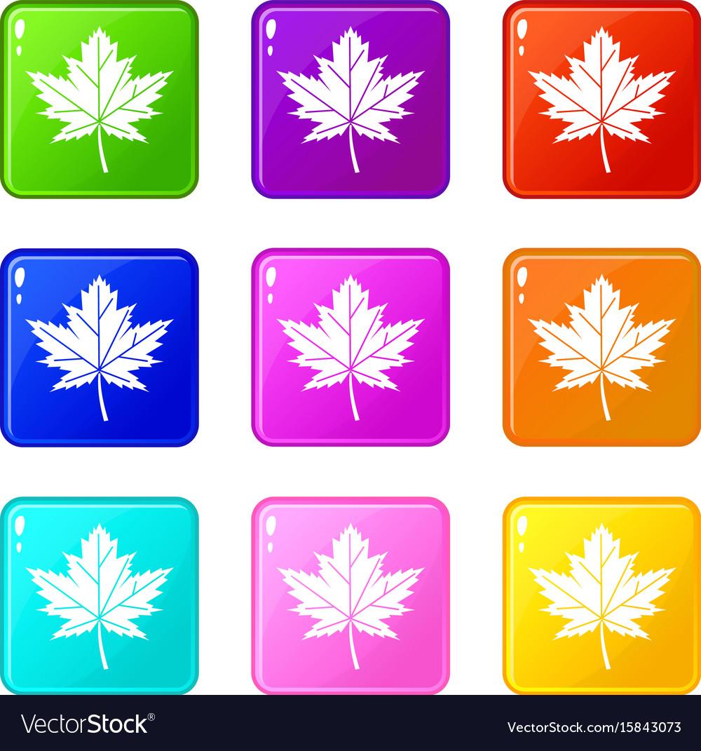Maple leaf icons 9 set