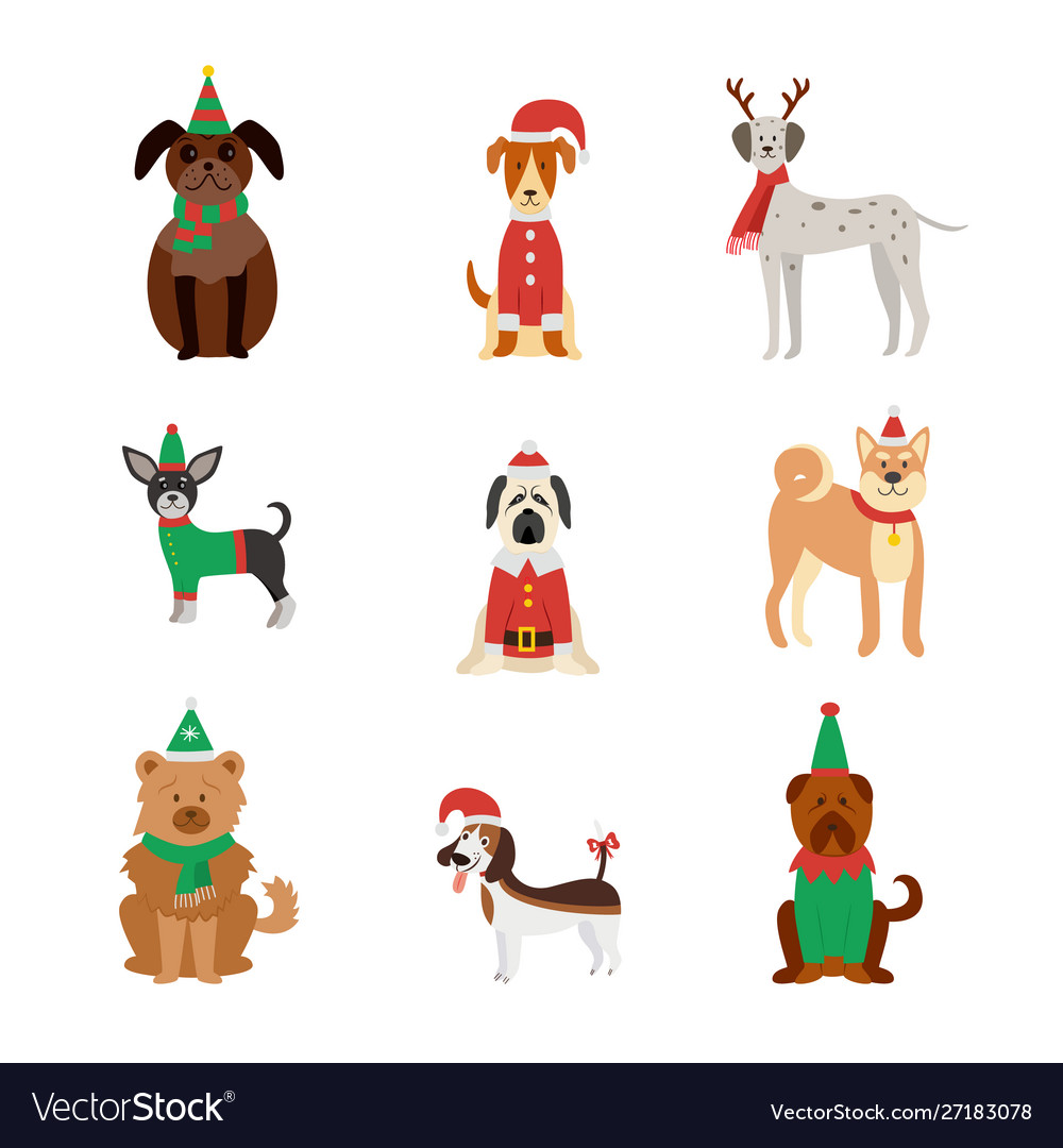 Dog breeds cute in christmas clothes and hats flat