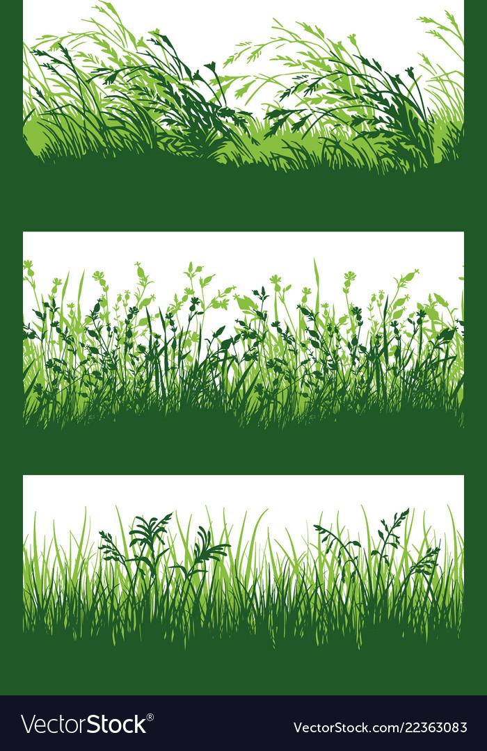 Green grass meadow border wallpaper