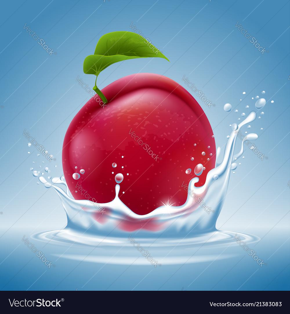 Plum fruit in water splash