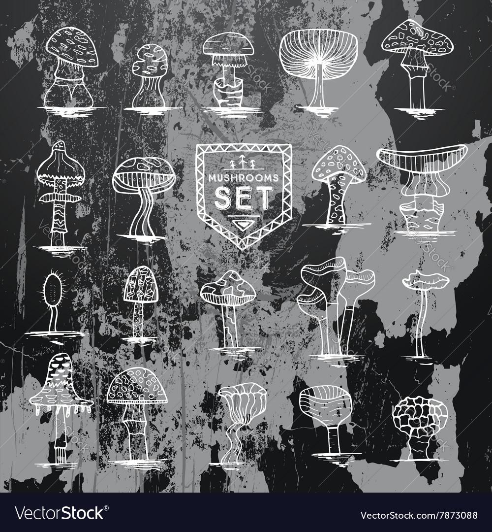 Mushroom set hand drawn on black vector image