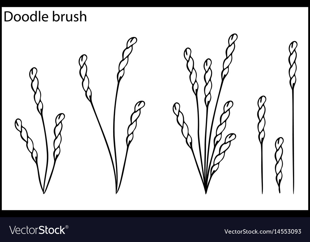 Doodle brush the grass and bushes vector image