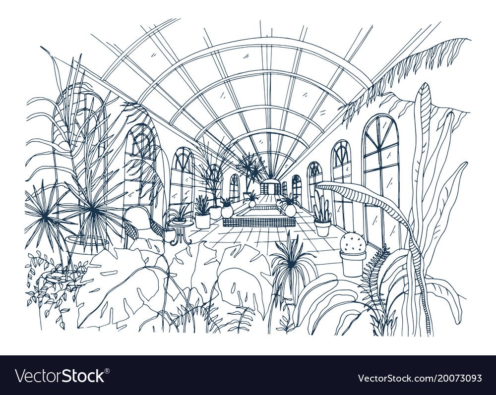 Freehand drawing of interior of greenhouse full of vector image