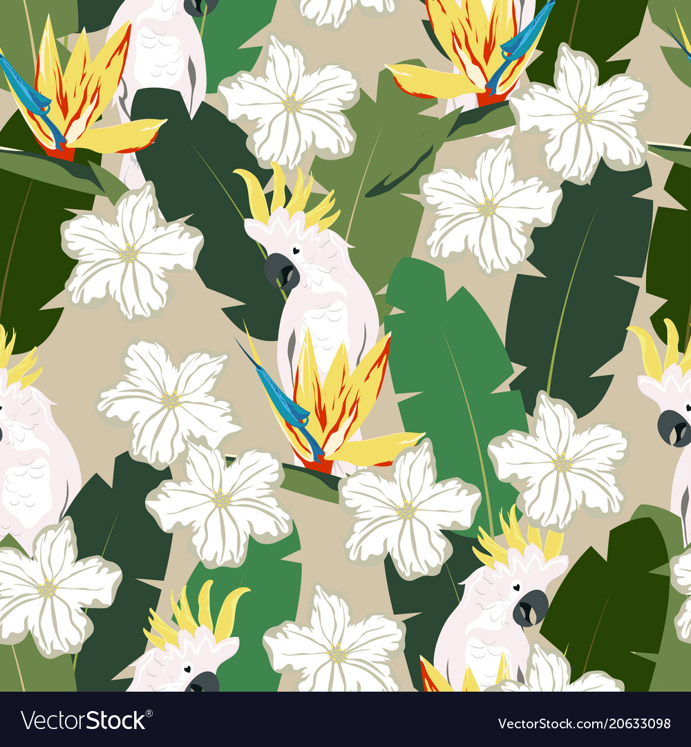 Tropical pattern with parrot vector