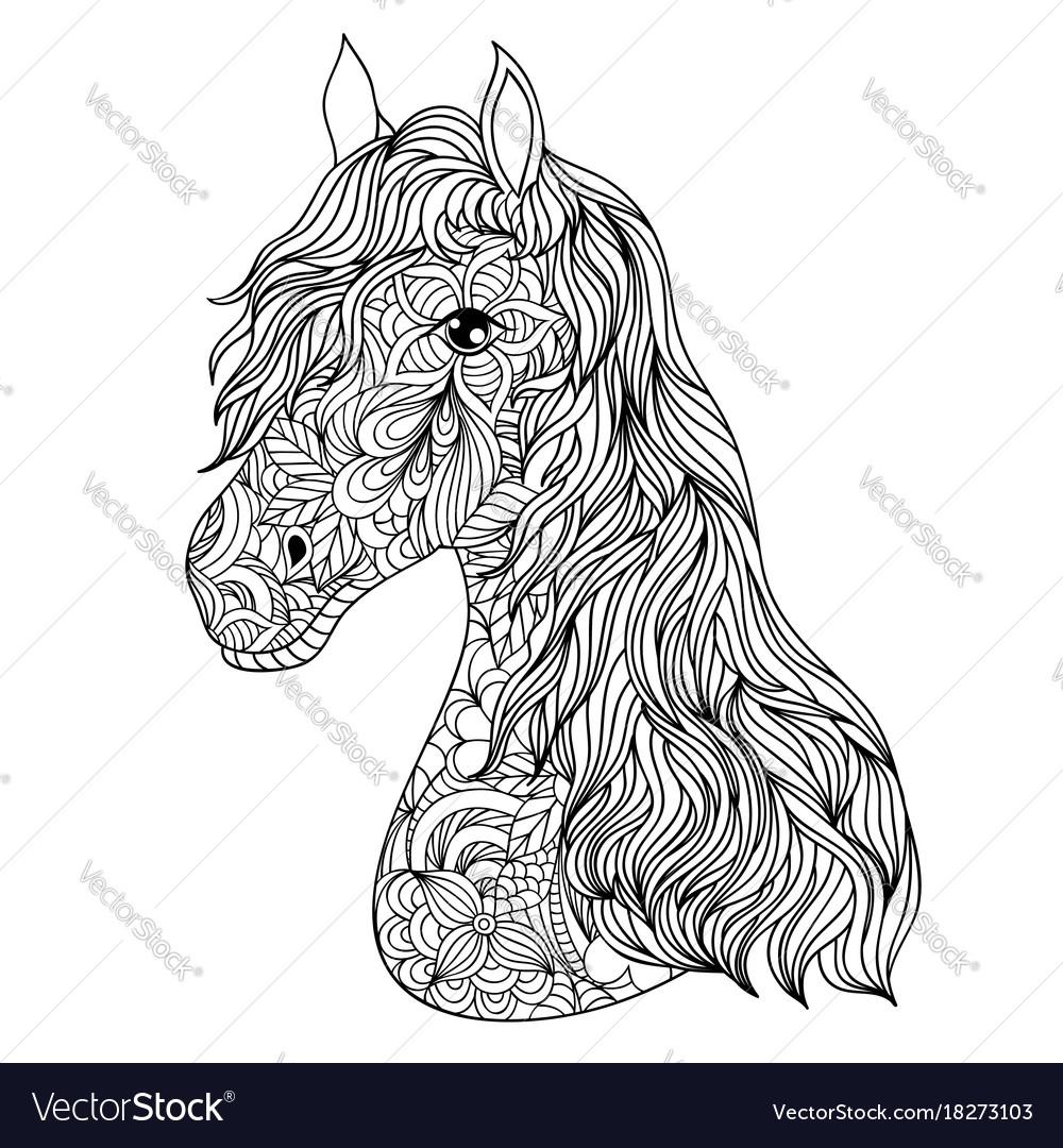 Hand drawn horse on white background
