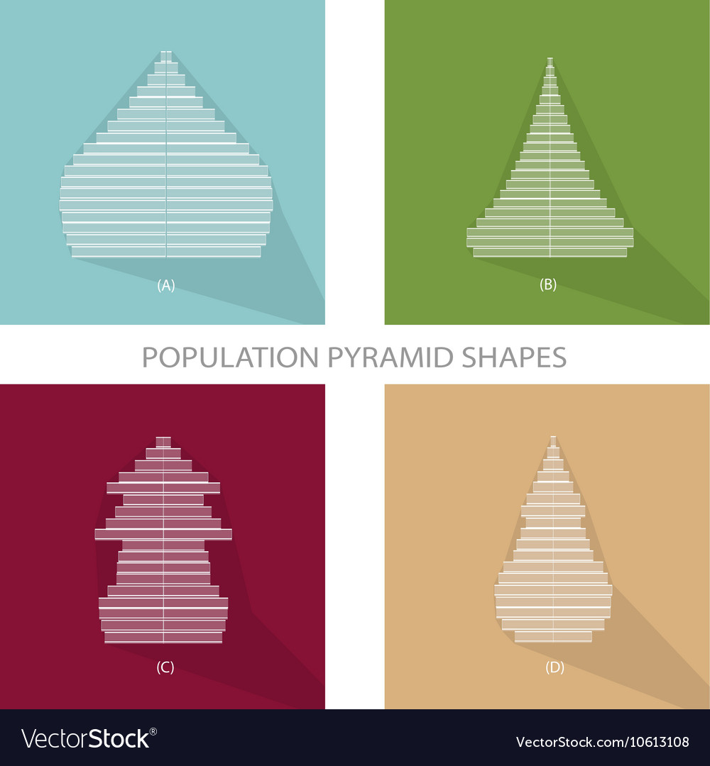 Four Different Types of Population Pyramids Graphs vector image