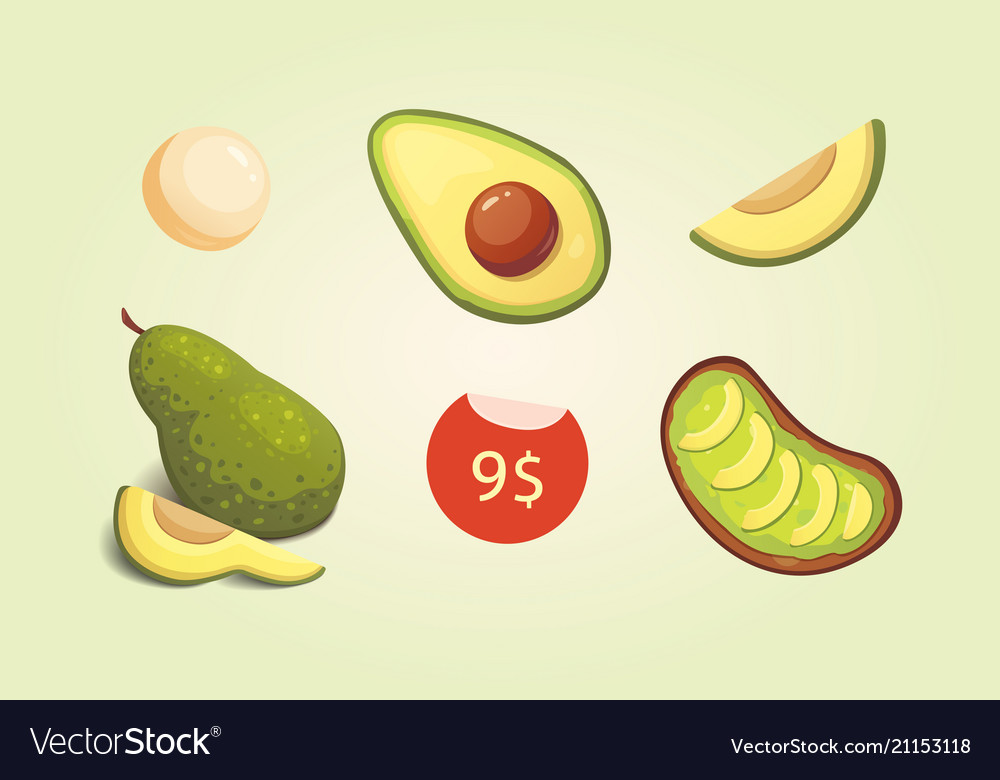Set realistic fresh avocado fruit slice and whole