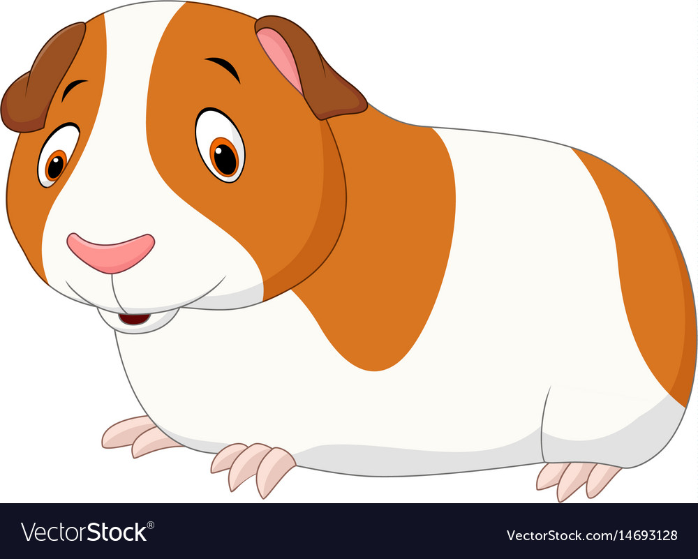 Cartoon funny hamster isolated on white background vector image