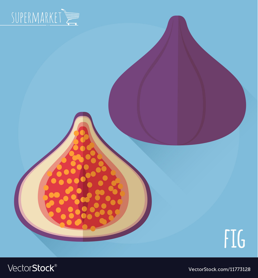 Figs icon vector image