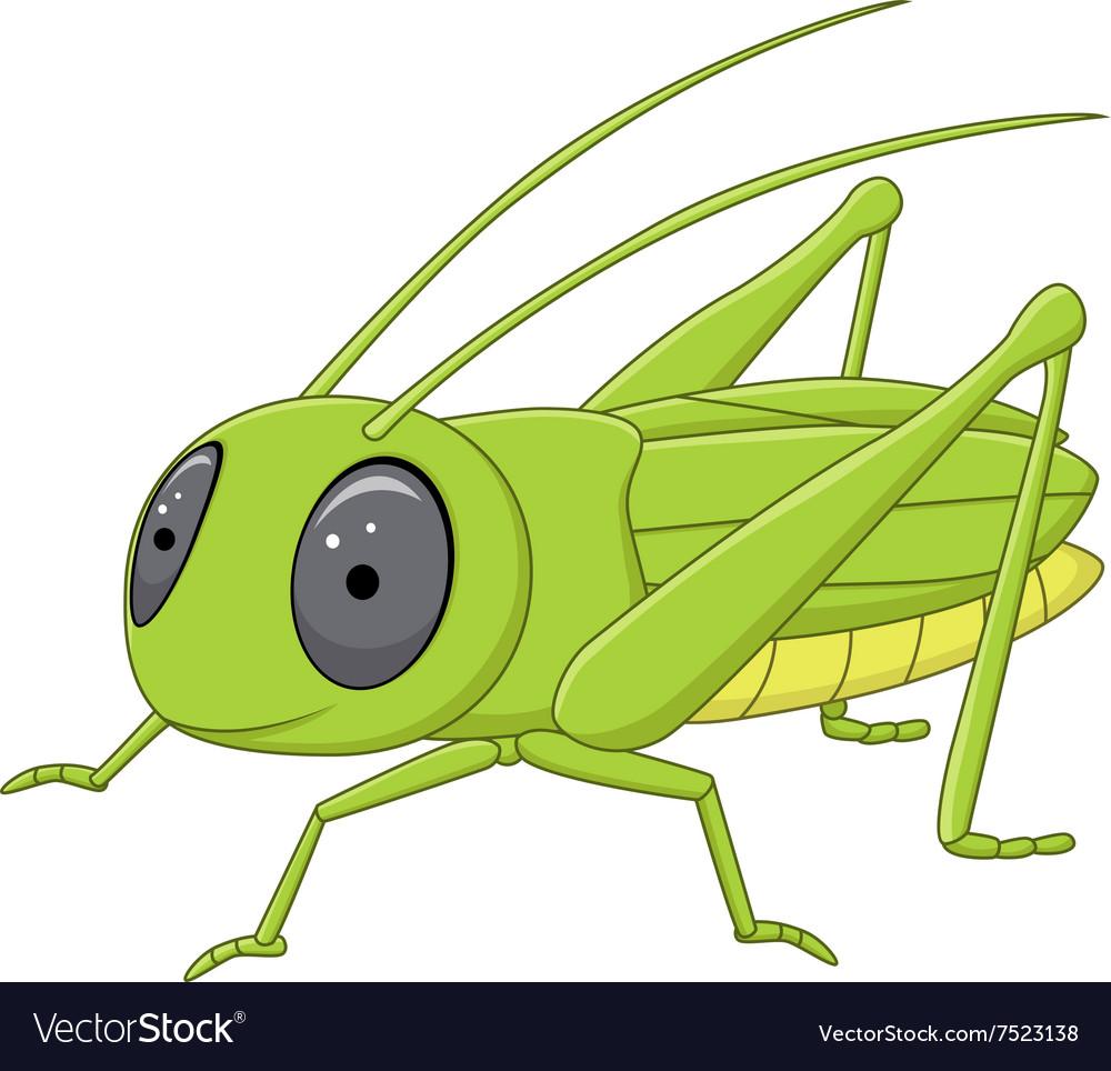 Cute grasshopper posing isolated