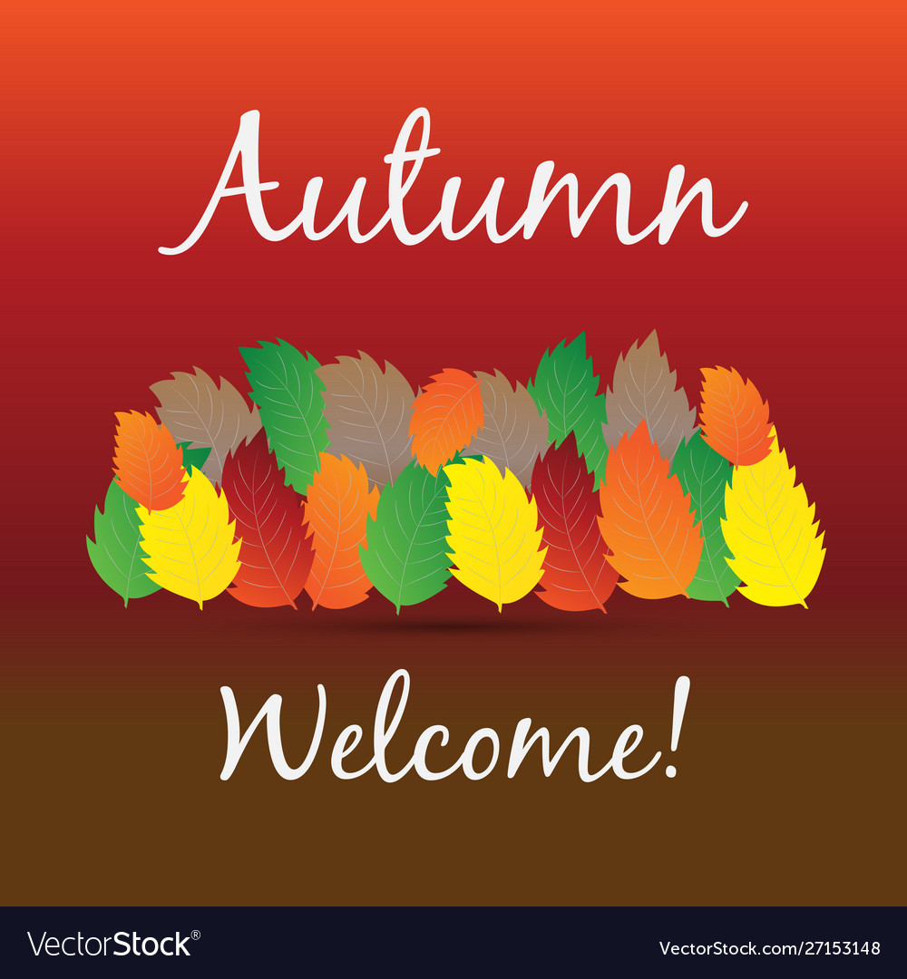 Autumn colorful fall leafs greetings card
