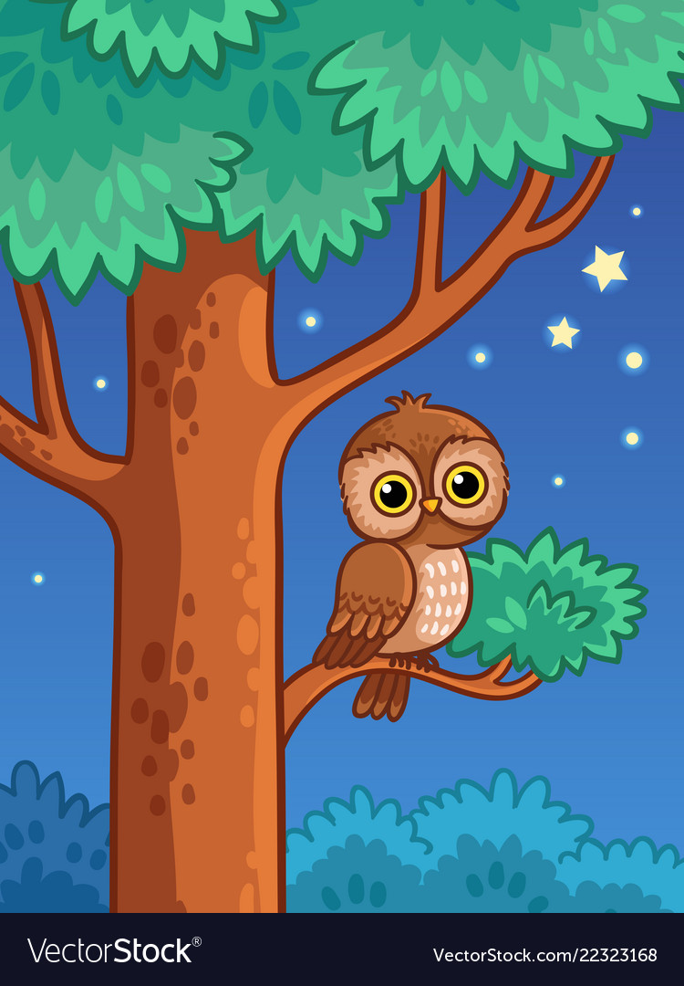 Owl at night sit on a tree branch