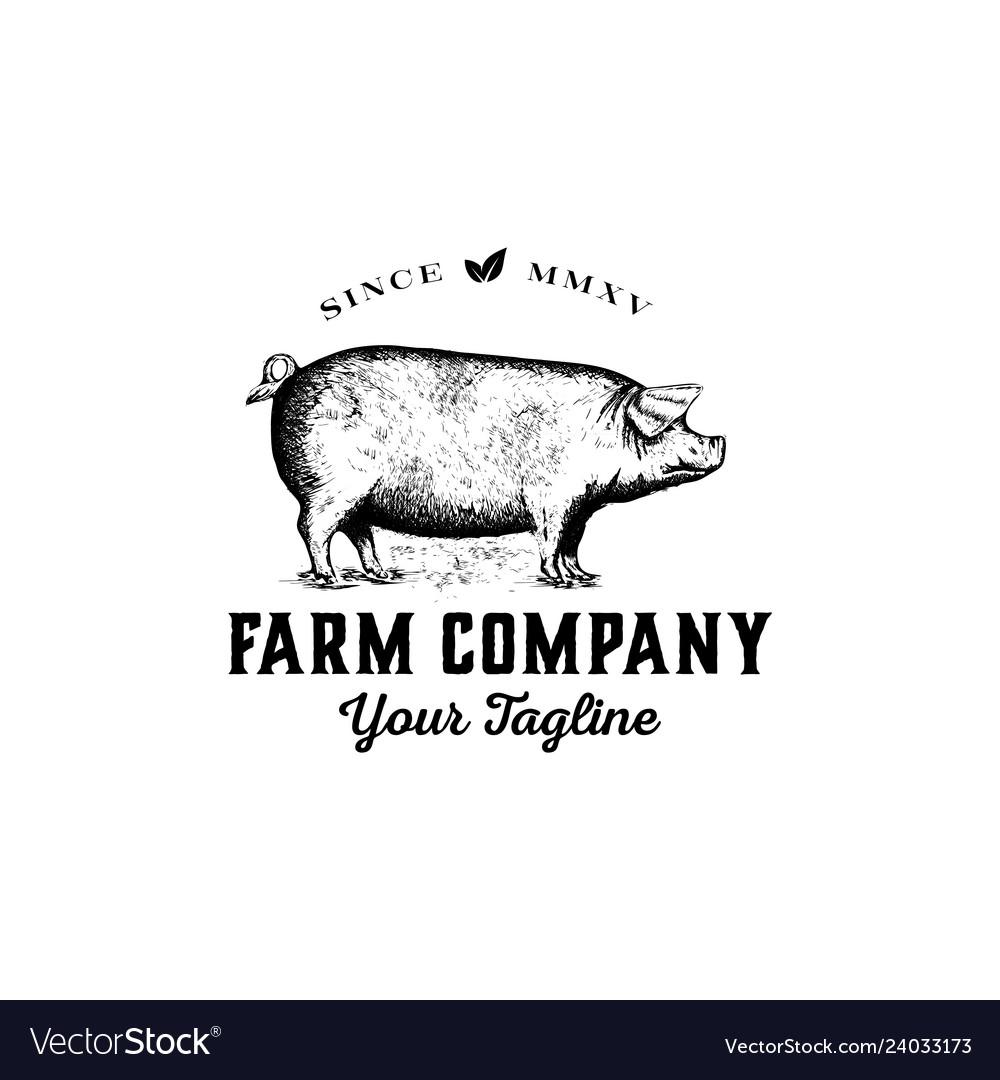 Pig logo farm logo