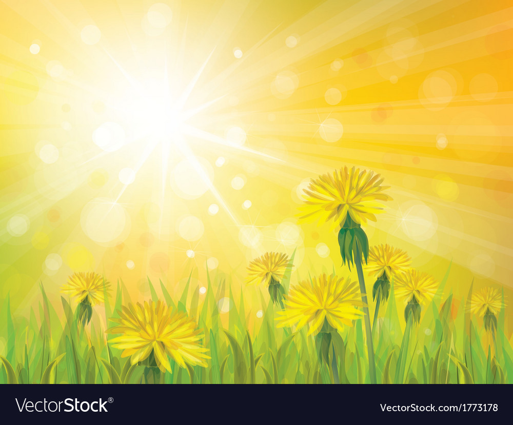 Spring yellow sun