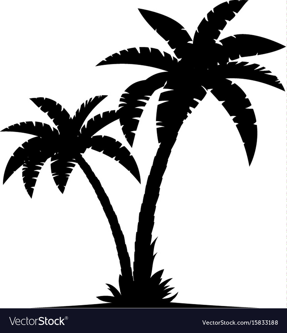 a palm tree silhouettes royalty free vector image rh vectorstock com palm tree vector free download palm tree vector file