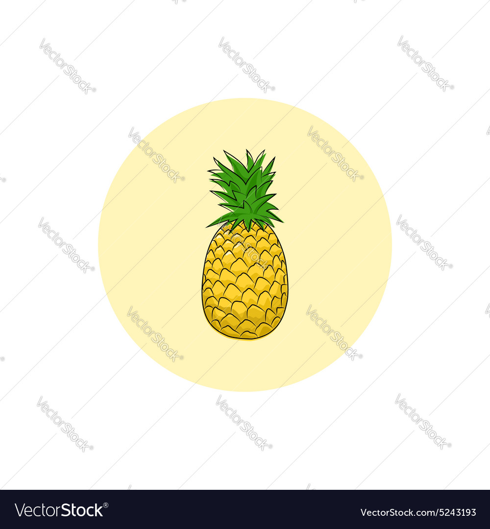 Icon Colorful Pineapple vector image
