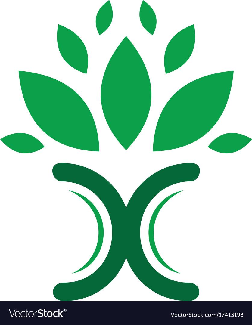 Leaf letter x eco logo