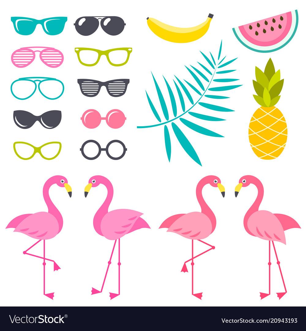 Set flamingo birds sunglasses and fruits