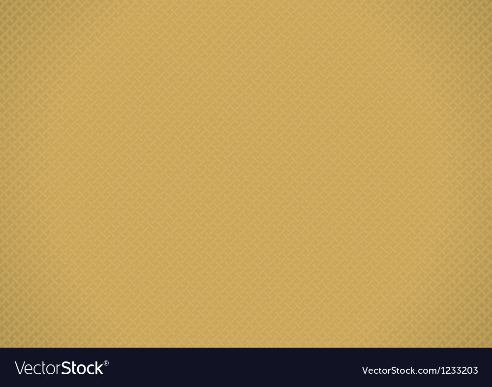 Brown background vector image