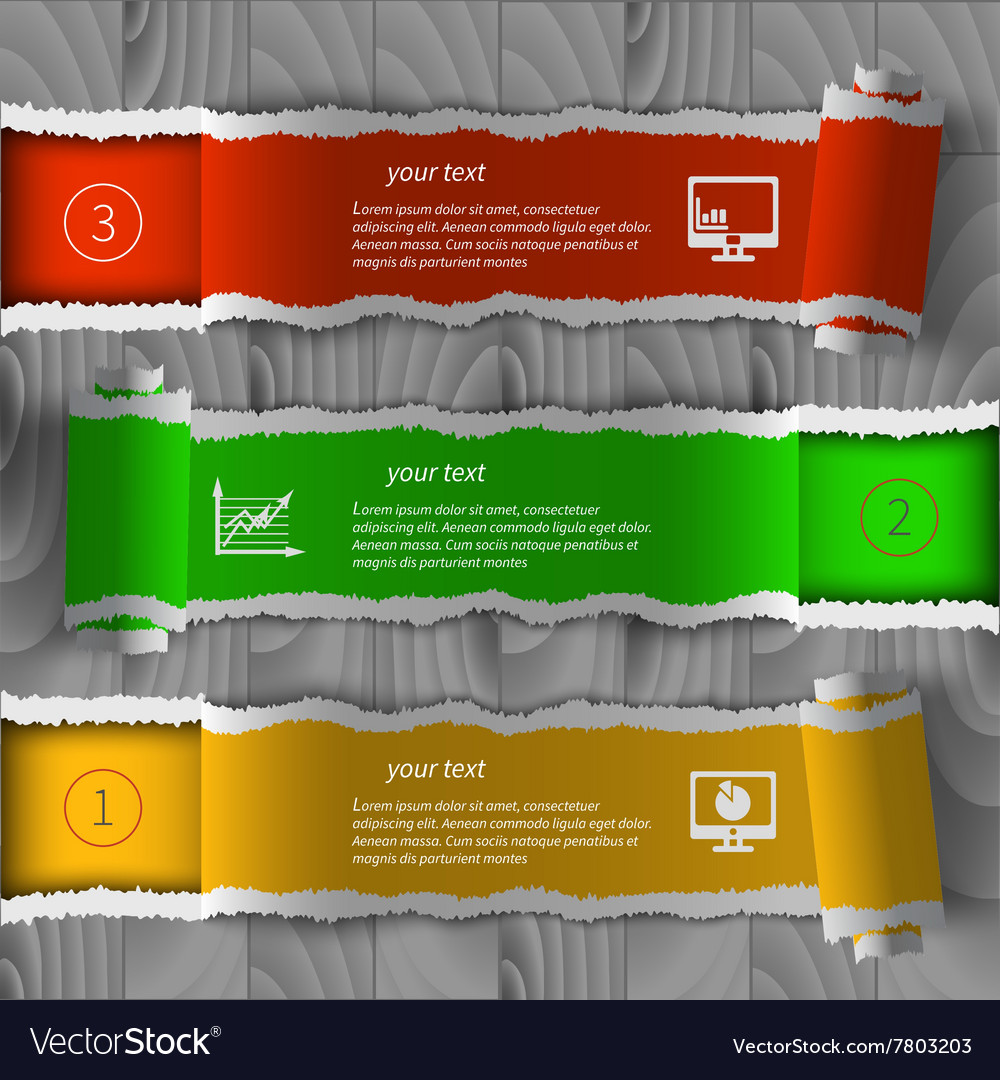 Torn paper infographics
