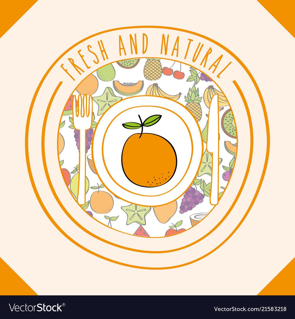 orange fresh and natural fruits food label vector image