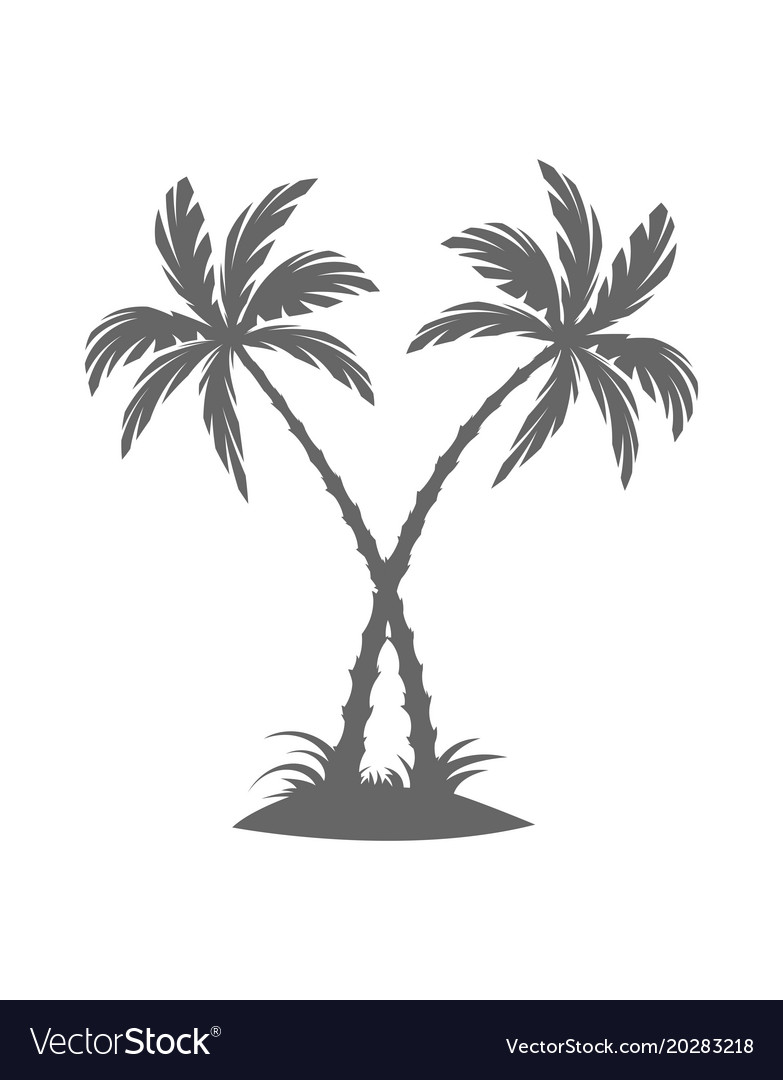 Silhouette of palm trees on the island