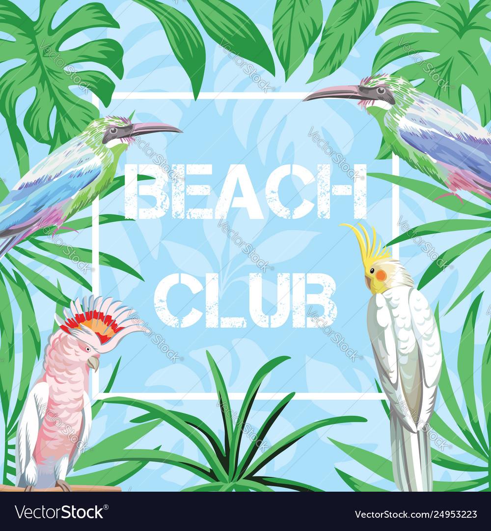 Slogan beach club birds and leaves blue background