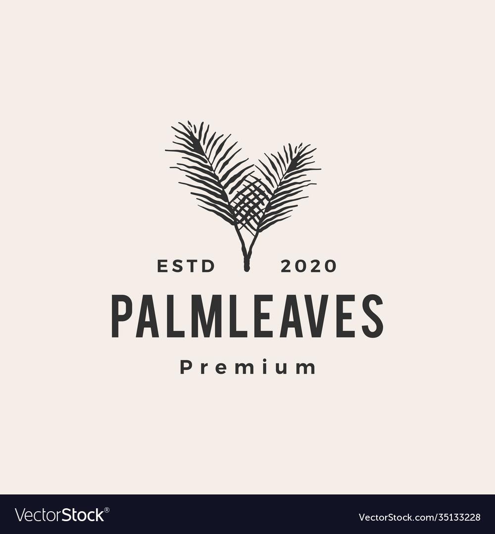 Palm leaf leaves hipster vintage logo icon