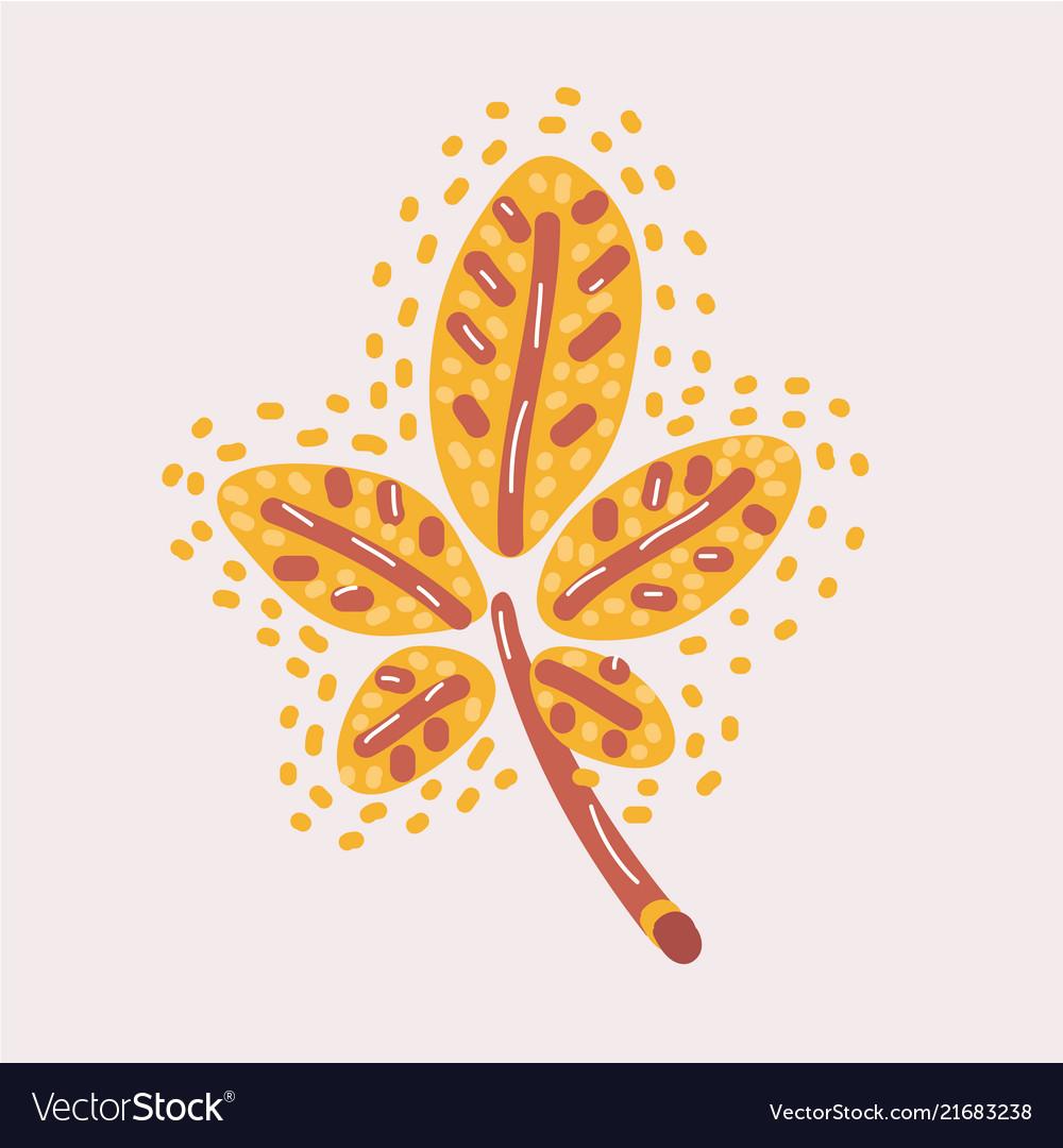 Autumn yellow chestnut tree leaf isolated