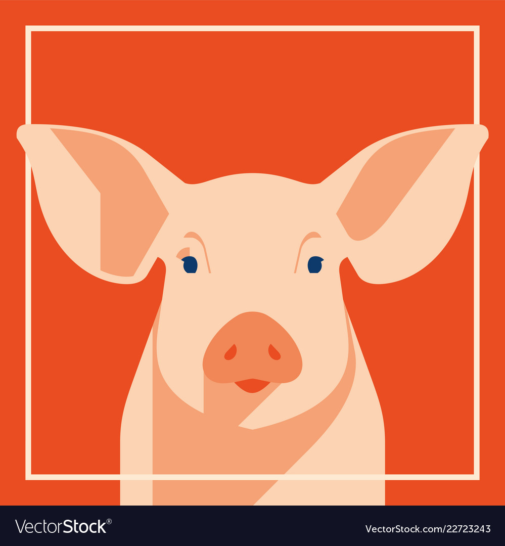 Pink pig in flat style a symbol of the 2019
