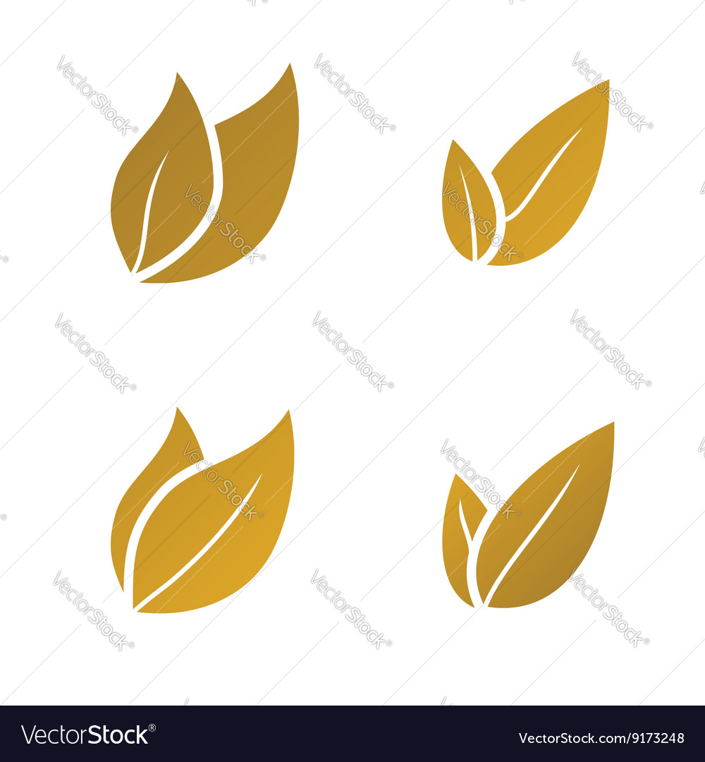 Gold Leaf icon set vector image