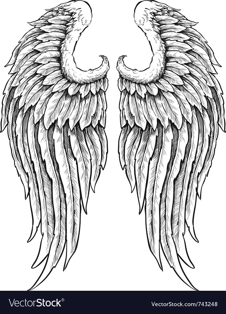 hand drawn angel wings royalty free vector image rh vectorstock com angel wings vector png angel wings vector png