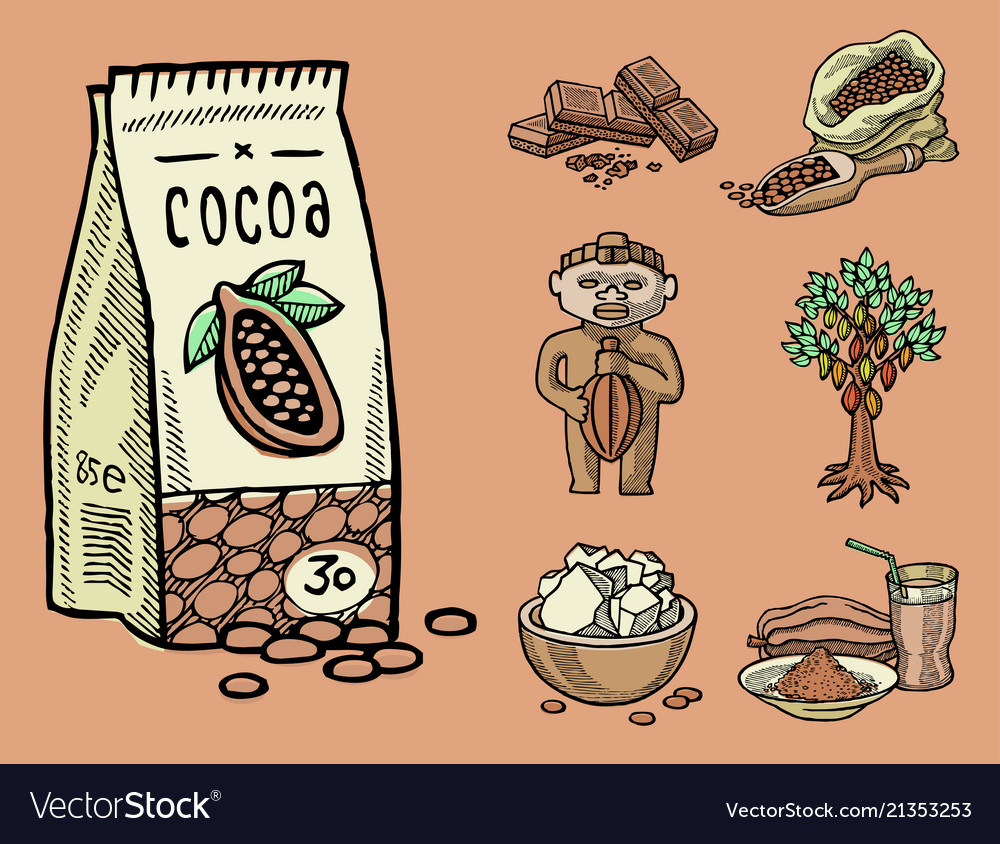 Cocoa products hand drawn sketch doodle