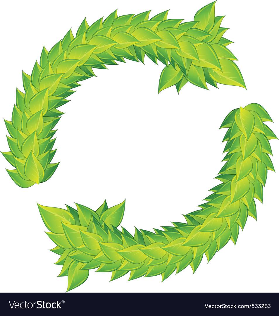 Wreath of green laurels vector image