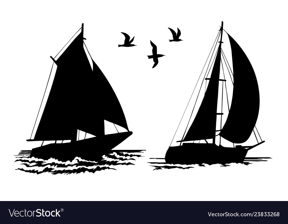 Silhouettes of sailing yachts and seagulls