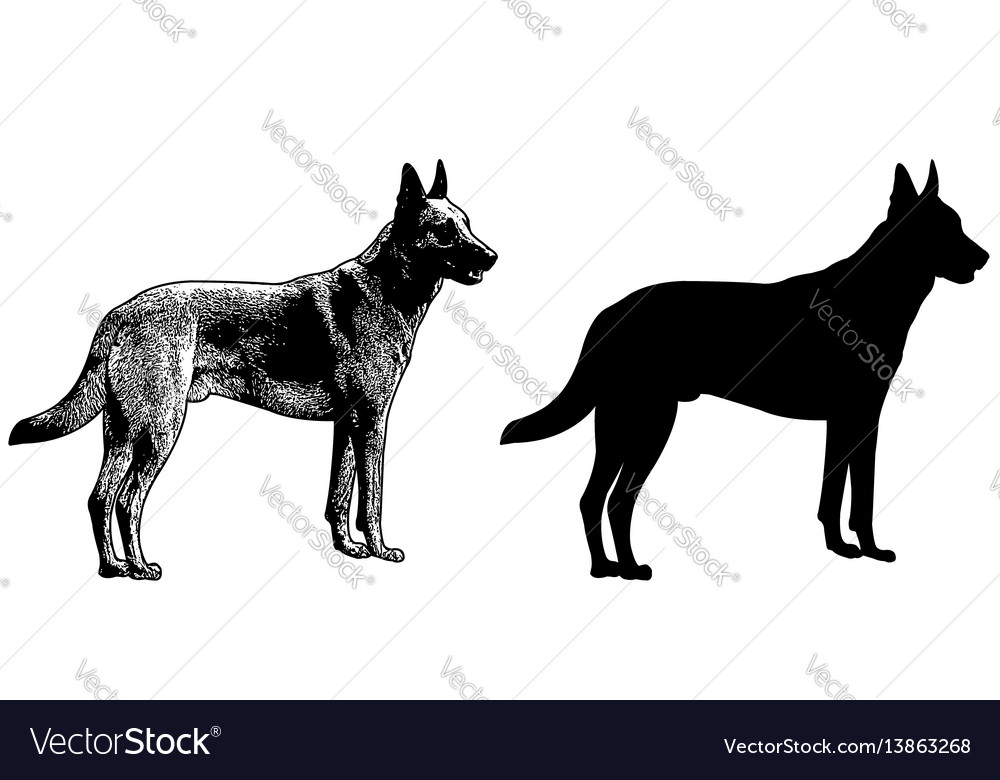 Watchdog silhouette and sketch vector image