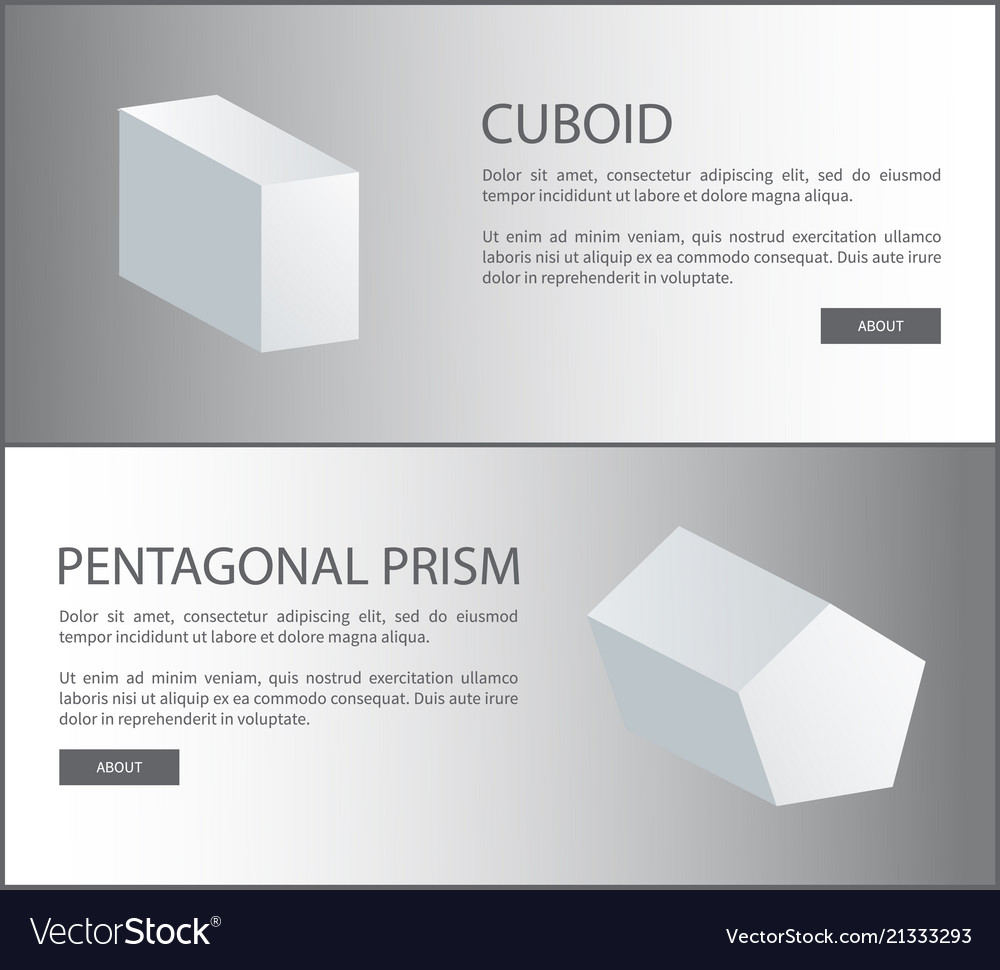 Cuboid and pentagonal prism 3d shaped web