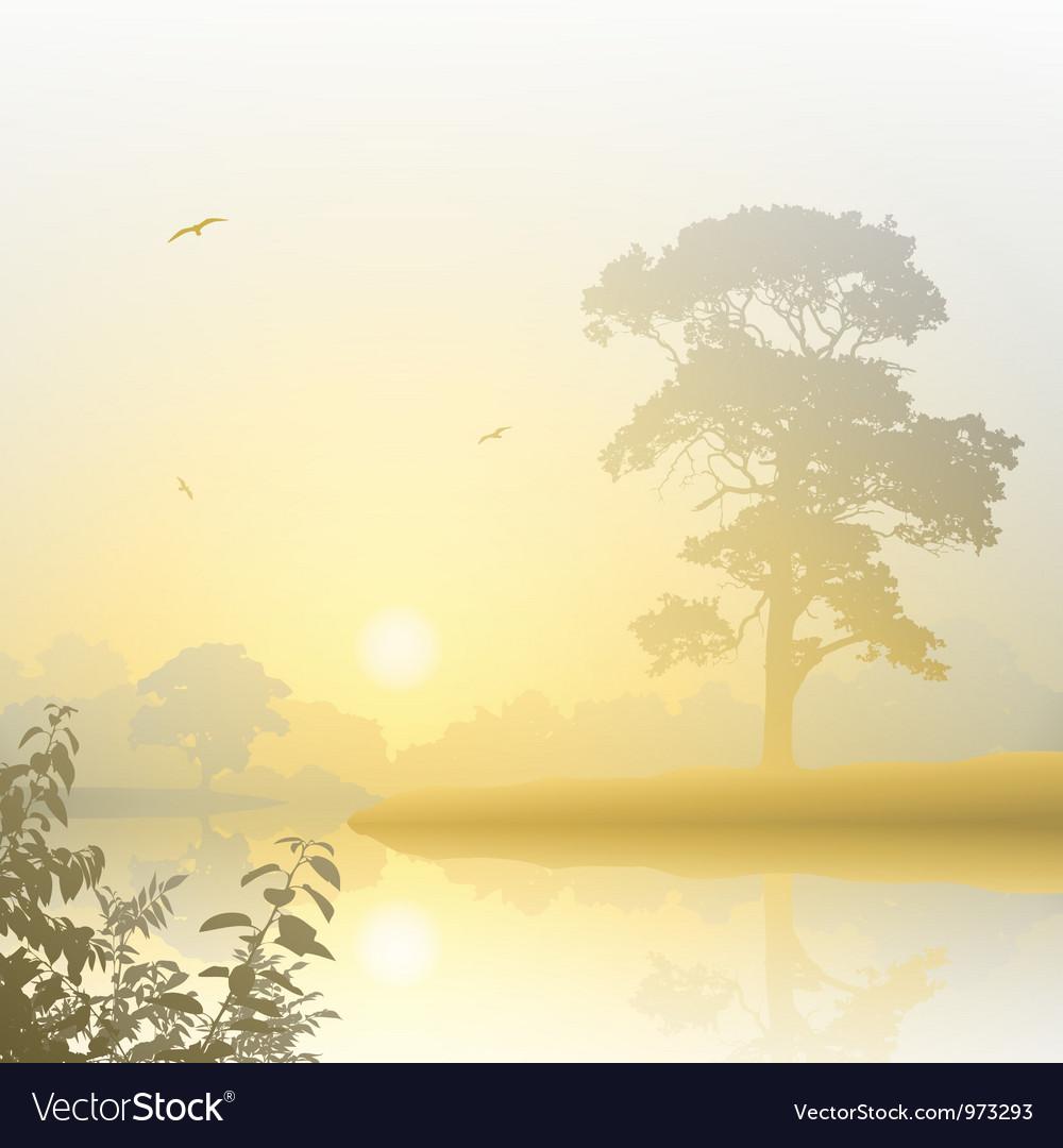 Misty Landscape vector image