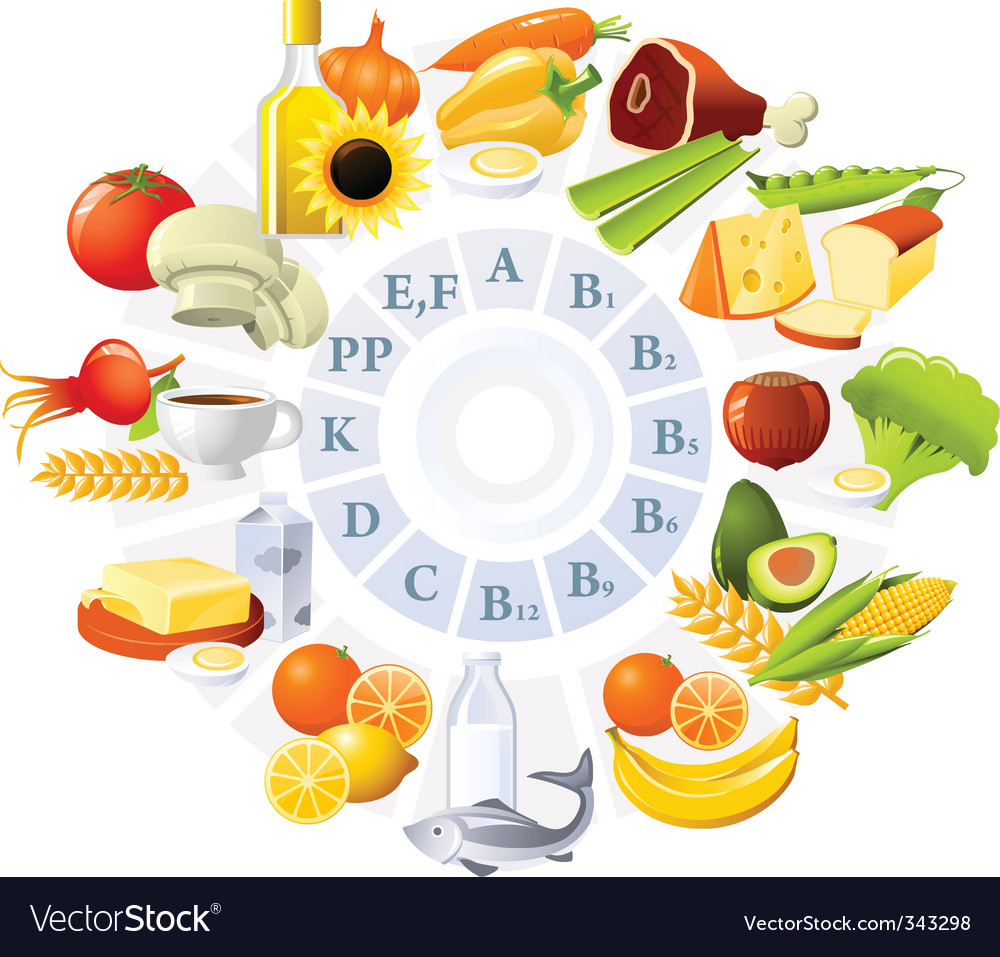 Table of vitamins vector image