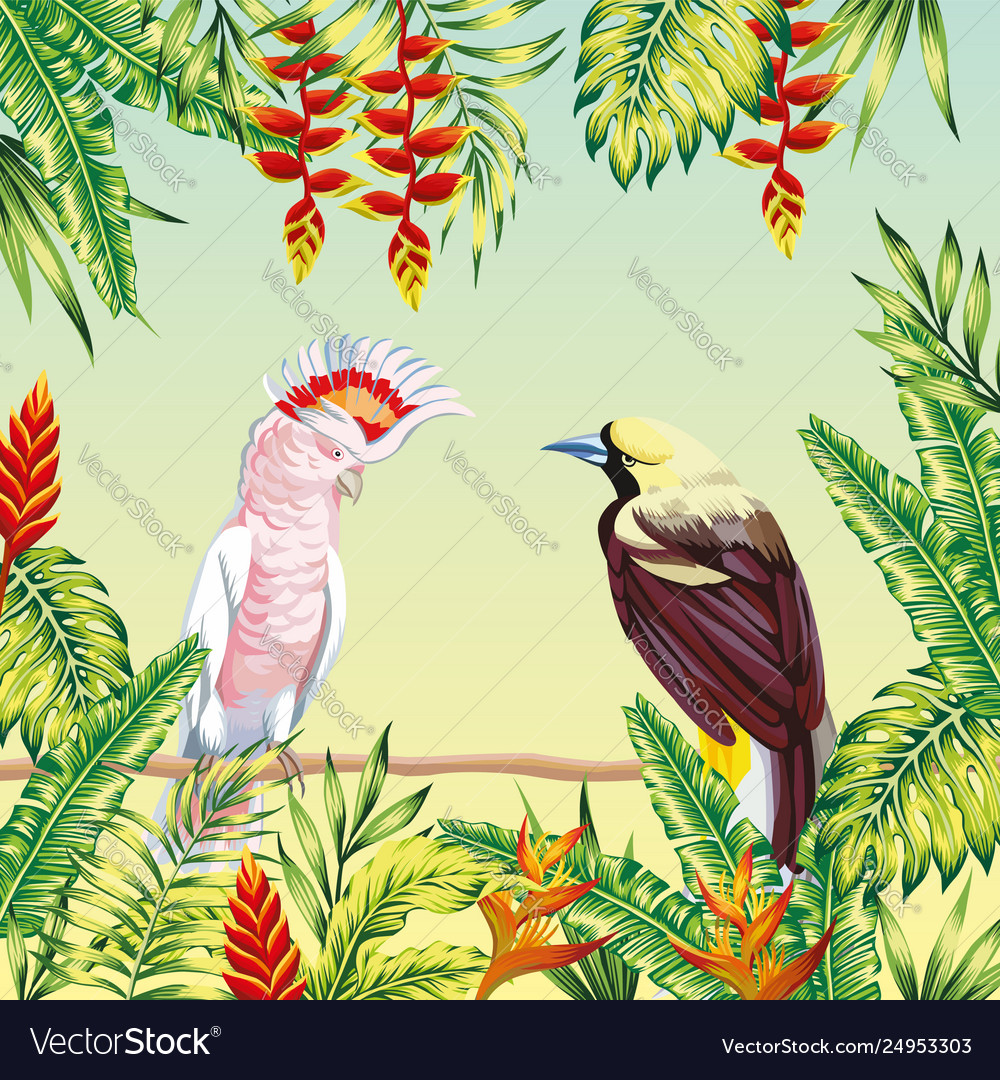 Tropical birds frame leaves and flowers
