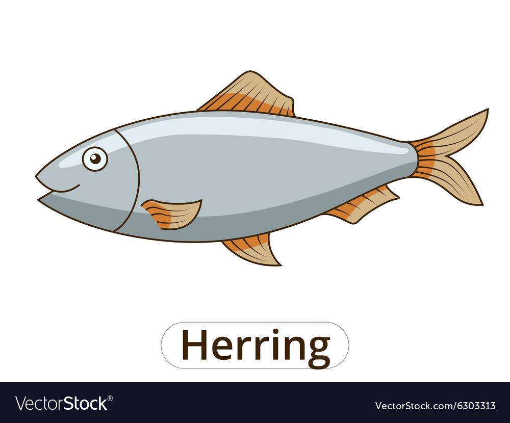 Herring underwater animal cartoon vector image