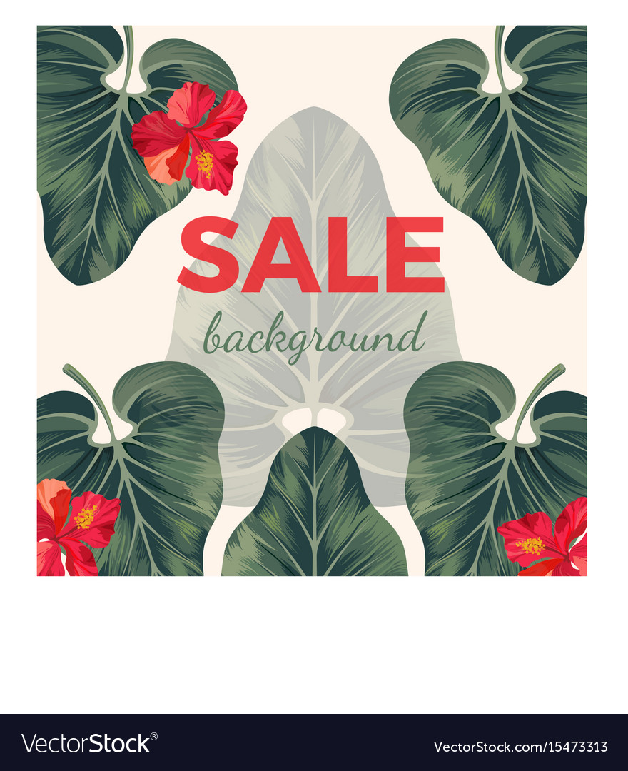 Sale background with exotic tropical leaves and